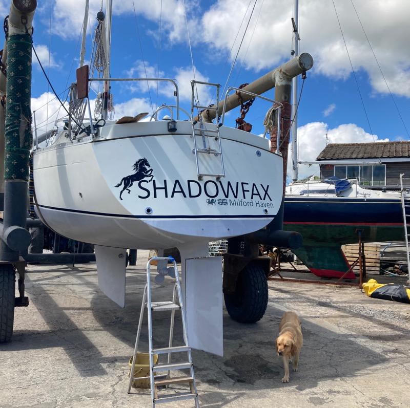 Customer Photos - Shadowfax
