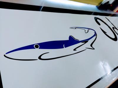 Customer Artwork Supplied - Shark